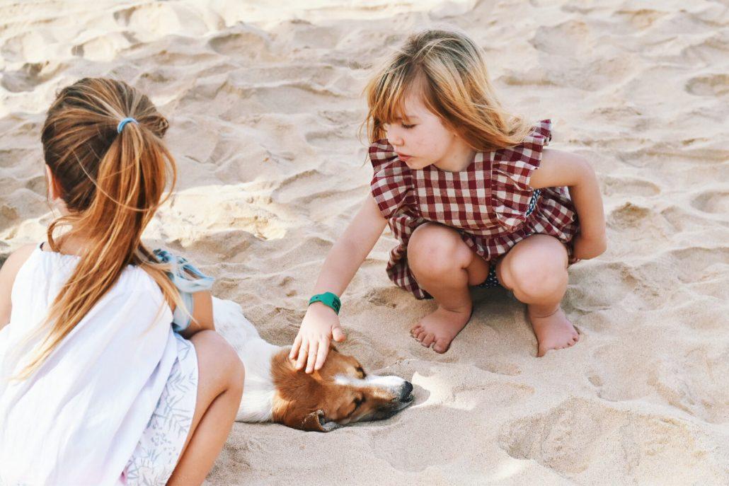 spiaggia di capo verde bambine giocano con cani